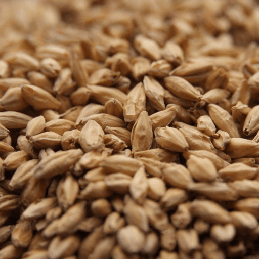 GRAINS - 2 Row Malt - 1lb