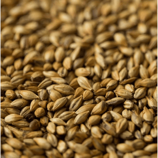 GRAINS - Crystal Medium Malt - 1lb