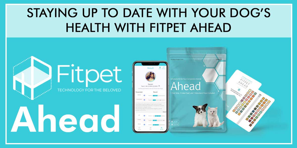 Staying up to date with your dog's health with Fitpet Ahead