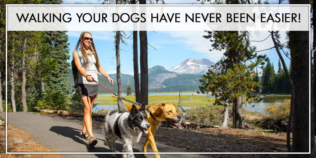 Walking Your Dogs Have Never Been Easier!