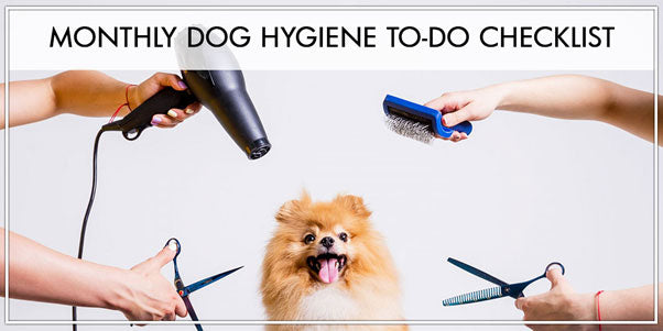 Monthly dog hygiene to-do Checklist