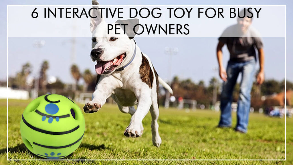 6 INTERACTIVE DOG TOYS FOR BUSY PET OWNER
