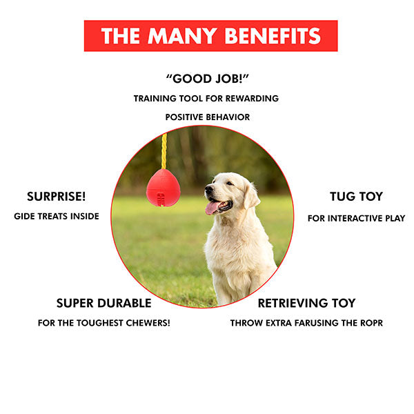 Bomb Durable Dog Treat toy - Red