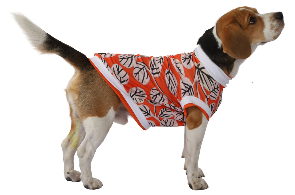 Blossom Dog Tee - orange