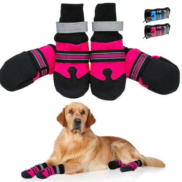 Pawsindia Pet Shoes