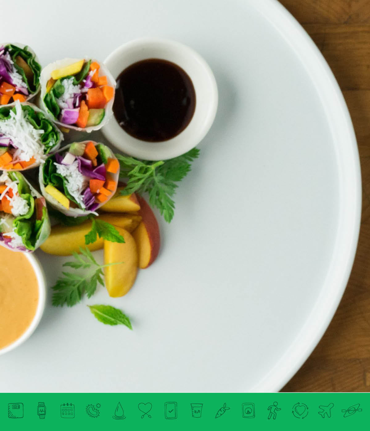 MSPrebiotic® Vegan Summer Rolls with Peanut Sauce