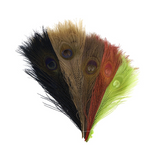 Assorted Dyed Peacock Feather