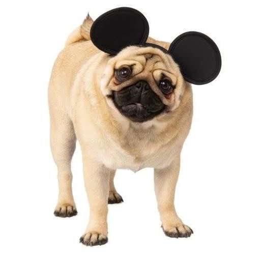 Mickey Mouse Pet Headpiece