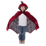 Red and Black Dragon Cloak
