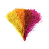 Bleached and Dyed peacock Feather {Fiesta Color assortment}^
