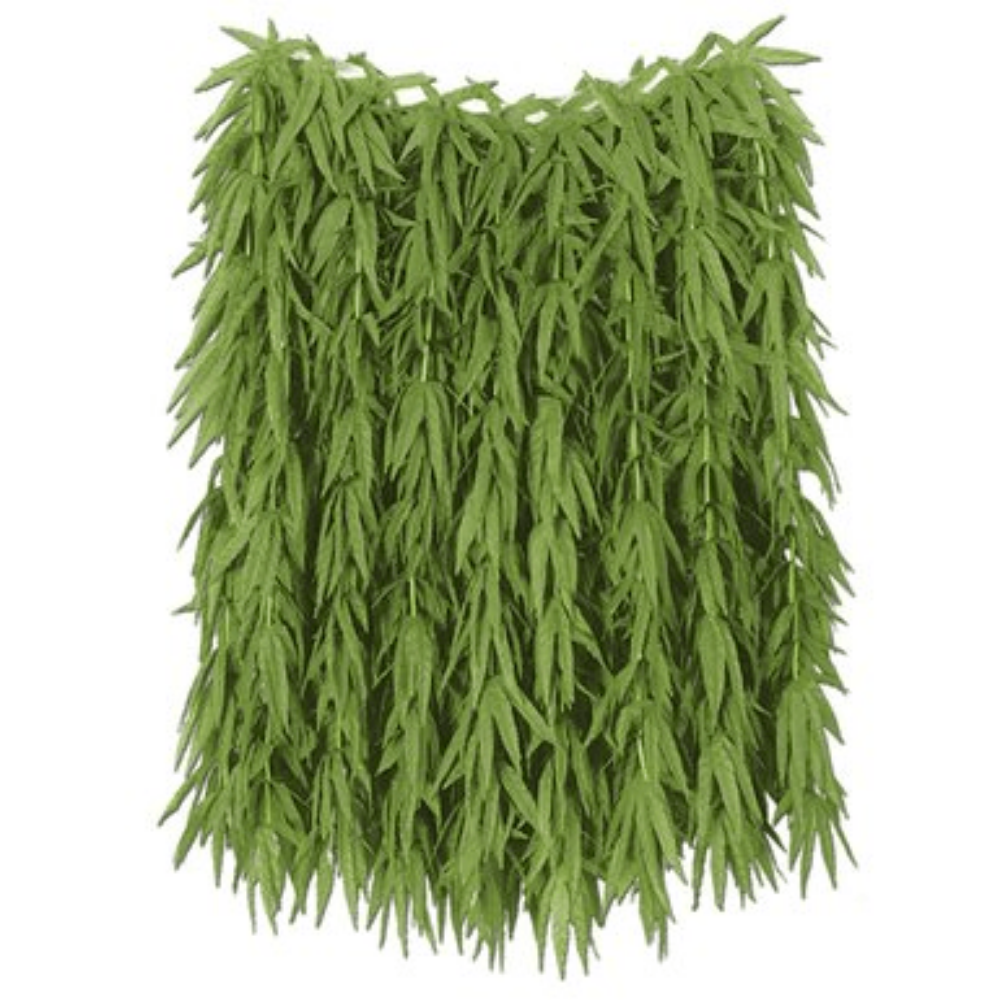 Tropical Fern Leaf Hula Skirt