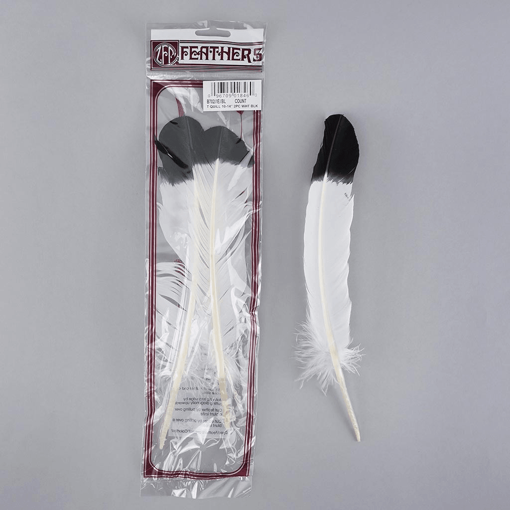 White Quil Feathers Dipped Black {Assorted}