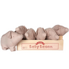 Baby Bacon Box Incl 6 Pigs - Mabel Child
