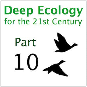 Deep Ecology Part 10
