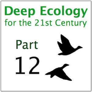 Deep Ecology Part 12