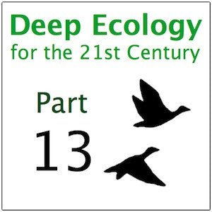 Deep Ecology Part 13