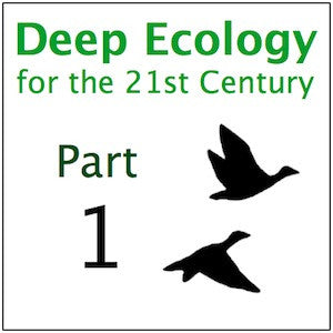 Deep Ecology Part 1