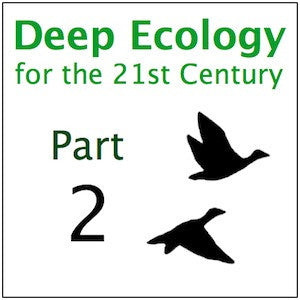 Deep Ecology Part 2