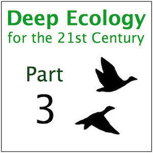 Deep Ecology Part 3