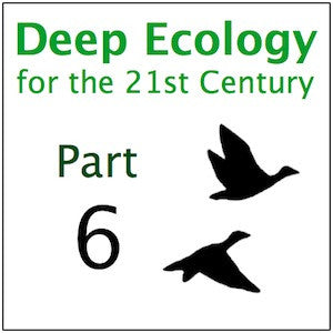 Deep Ecology Part 6
