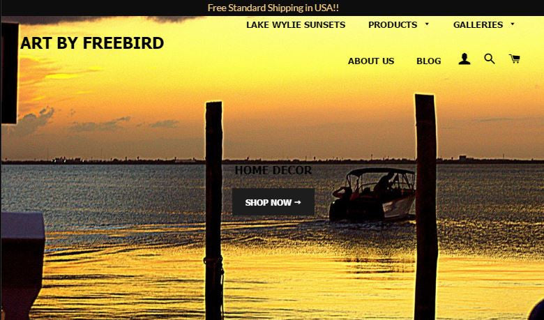 Launch of Art by Freebird Website and eStore