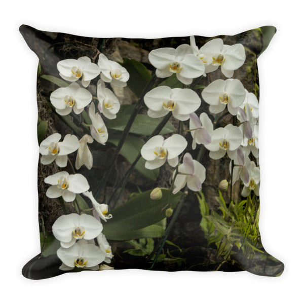 Beautiful Phalaenopsis Orchid Pillow