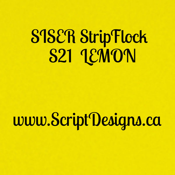 Siser StripFlock - ScriptDesigns - 11