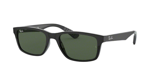Ray Ban RB4234 Men Sunglasses