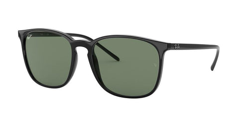 Ray Ban RB4387F Unisex Sunglasses