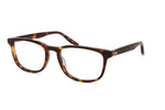 Barton Perreira Thompson Eyeglasses