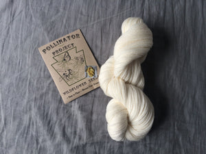 **SINGLE PACK of Dye Flower Seeds with skein of ready to dye US grown yarn