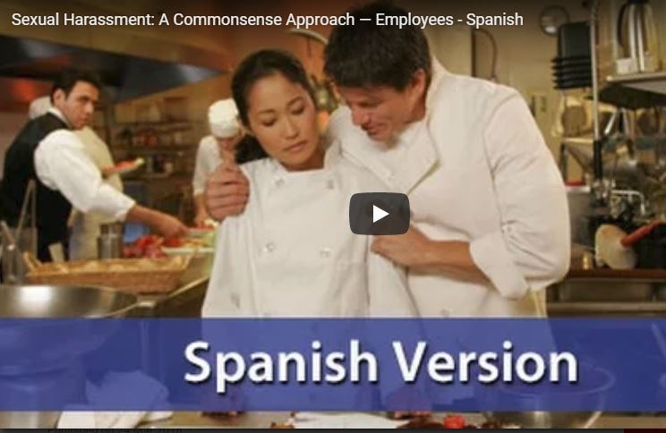 Sexual Harassment: A Common Sense Approach - Employee Version, Spanish - DVD