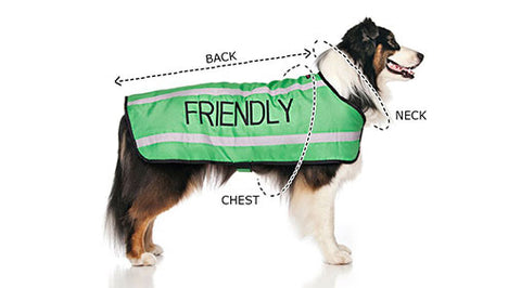 Friendly Dog Collars Sizing and Materials
