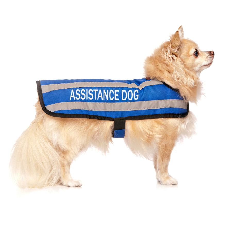 ASSISTANCE DOG - S/M Coat