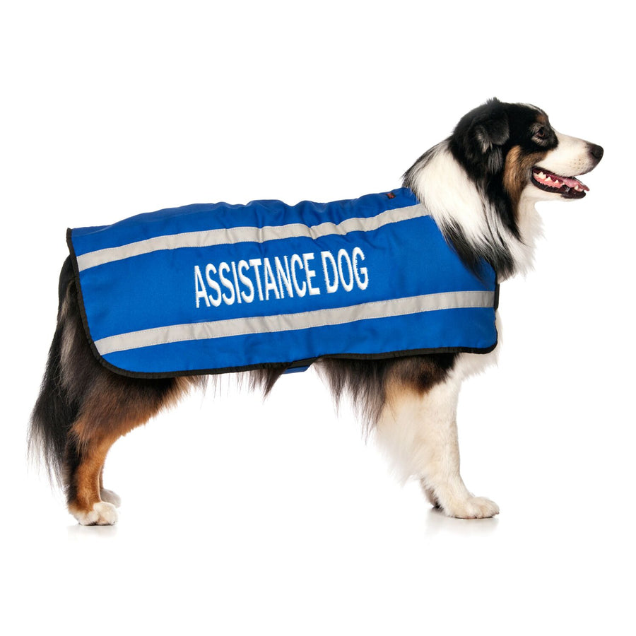 ASSISTANCE DOG - L/XL Coat