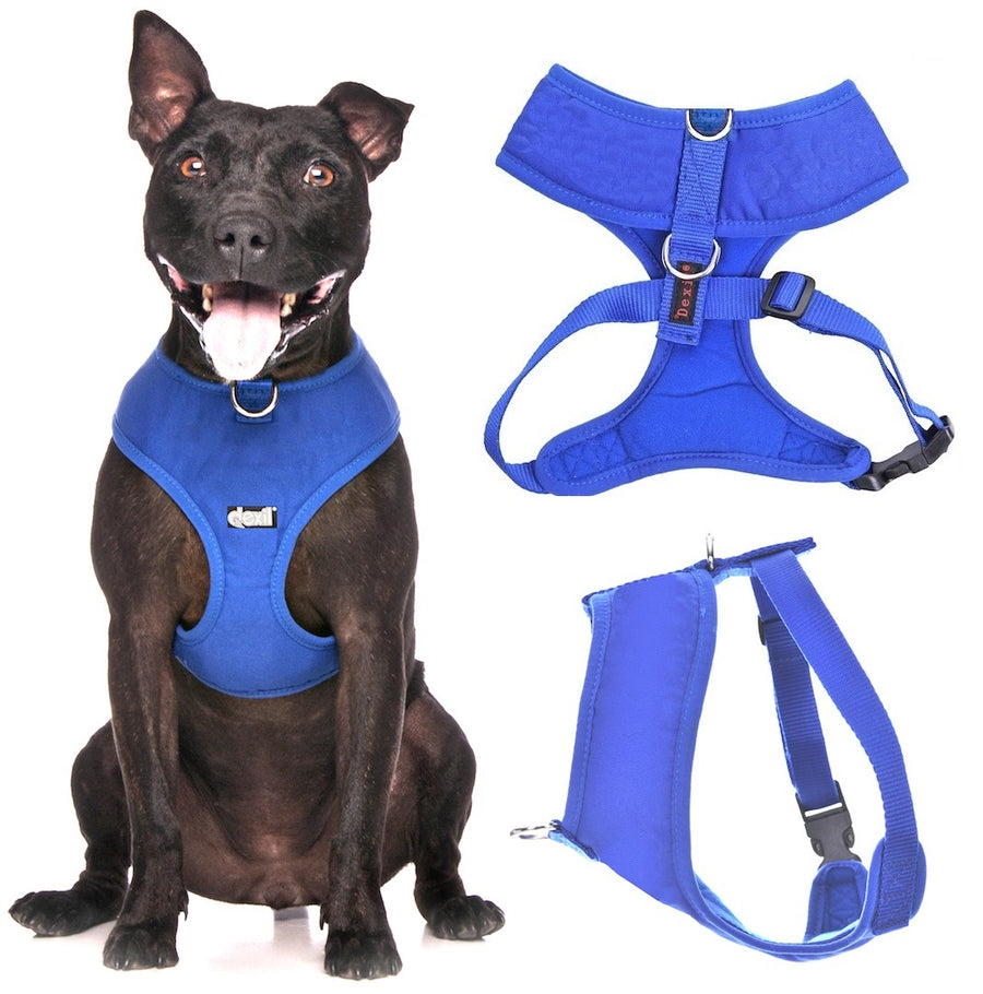 ROYAL BLUE - Medium Vest Harness