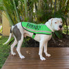 Dexil Friendly Dog Collars Green FRIENDLY Dog Coat / Jacket