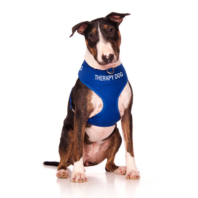 Friendly Dog Collars TRAINING Adjustable Vest Harness