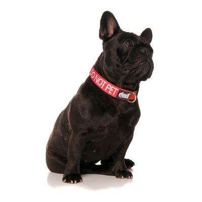 DO NOT PET - S/M Clip Collar