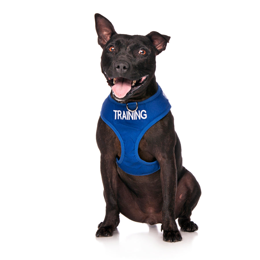 Friendly Dog Collars TRAINING Medium Vest Harness