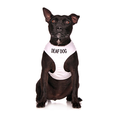 Friendly Dog Collars DEAF DOG Medium Vest Harness