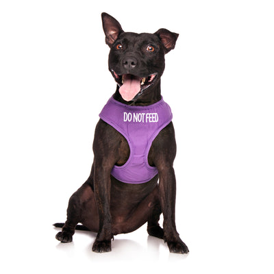 Friendly Dog Collars DO NOT FEED Medium Vest Harness
