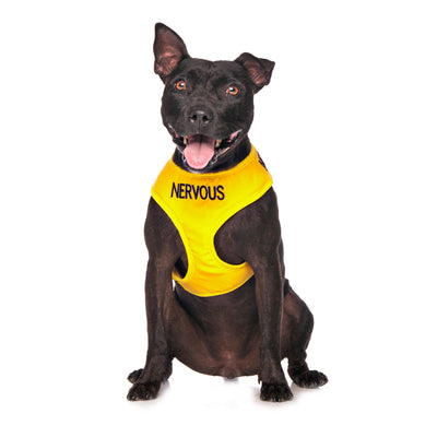 Friendly Dog Collars NERVOUS Medium Vest Harness