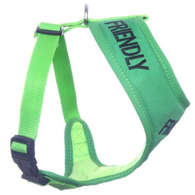 Friendly Dog Collars Green FRIENDLY Medium Vest Harness