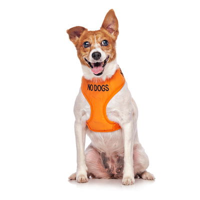 Friendly Dog Collars NO DOGS Small Vest Harness