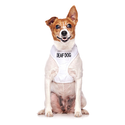 Friendly Dog Collars DEAF DOG Small Vest Harness