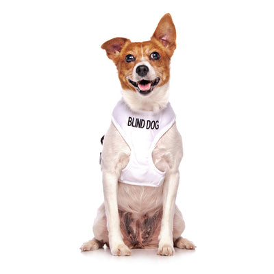 BLIND DOG Small Vest Harness