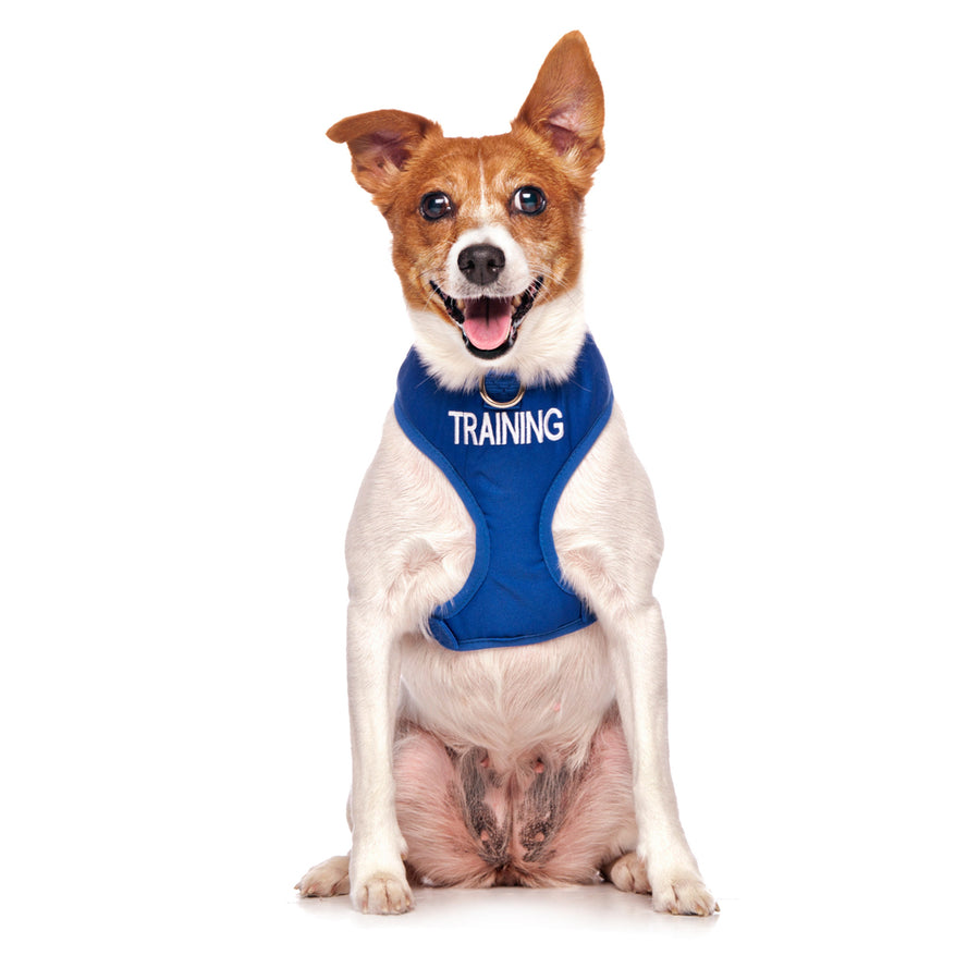 Friendly Dog Collars TRAINING Small Vest Harness