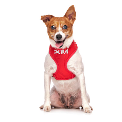 Friendly Dog Collars CAUTION Small Vest Harness