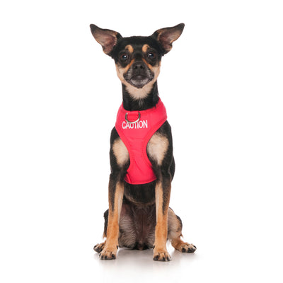 Friendly Dog Collars CAUTION XS Vest Harness